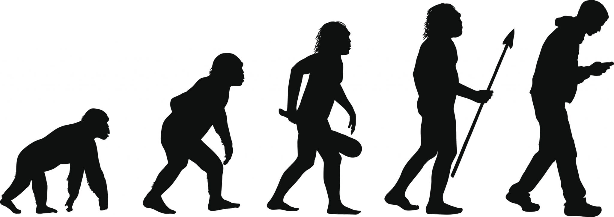 Evolution of Posture